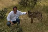 Imagen de Entre Lobos