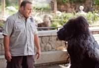 Imagen de Zoo Loco
